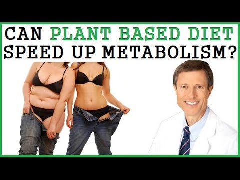Can Plant Based Diet Speed Up Your Metabolism? Dr Neal Barnard
