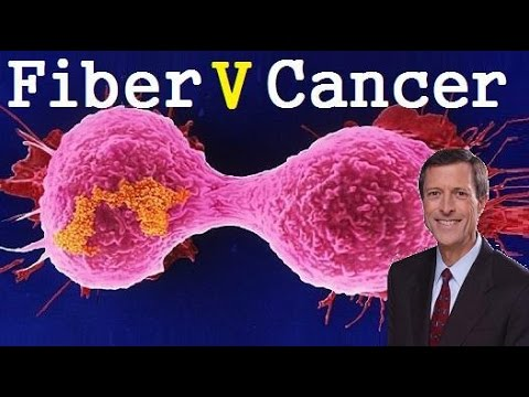 Incredible Power Of Fiber! Can It Prevent Cancer? Dr Neal Barnard