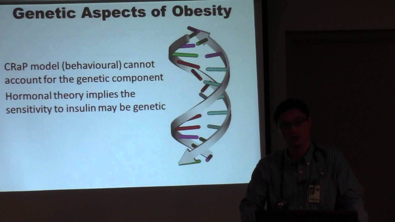The Aetiology of Obesity Part 2 of 6: The New Science of Diabesity